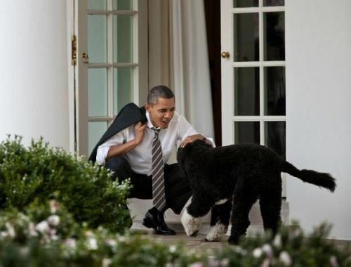 Prez and Bo